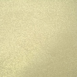GOLD23